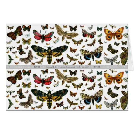 Colourful Butterflies Antiquarian Image Bookmark Card