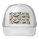 Colourful Butterflies Antiquarian Image Bookmark Mesh Hats
