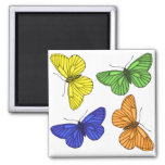 Colourful Butterflies Magnet