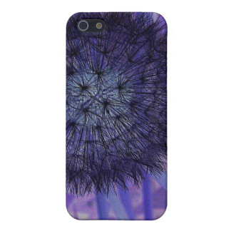 colourful case case for the iPhone 5
