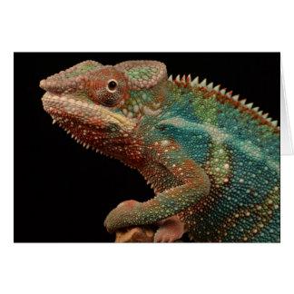 Colourful Chameleon! Card
