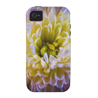 Colourful chrysanthemum case for the iPhone 4