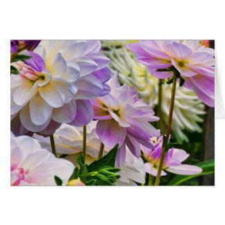Colourful Dahlia Flower Summer Garden Greeting Card