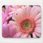 Colourful Daisies Mouse Pad