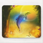 Colourful Dolphin