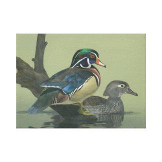 Colourful Duck Canvas Print
