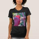 Colourful eclectus parrot t-shirt