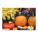 Colourful fall decorative pumpkin display gallery wrapped canvas