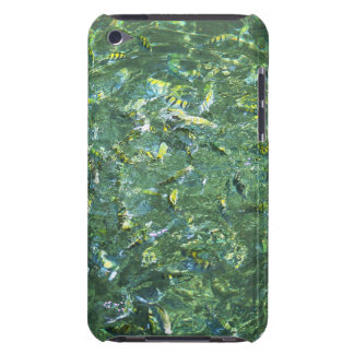 Colourful fish in clear water in Saint Lucia Barely There iPod Cover