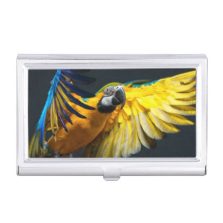 Colourful flying Ara on a dark background Business Card Holder