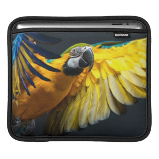 Colourful flying Ara on a dark background iPad Sleeve