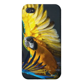 Colourful flying Ara on a dark background iPhone 4 Case