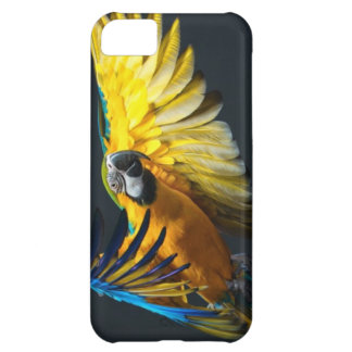 Colourful flying Ara on a dark background iPhone 5C Case