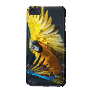 Colourful flying Ara on a dark background iPod Touch (5th Generation) Covers