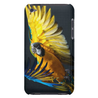Colourful flying Ara on a dark background iPod Touch Case