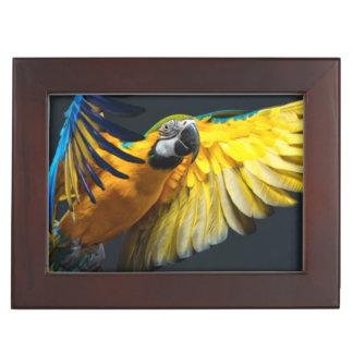 Colourful flying Ara on a dark background Keepsake Box