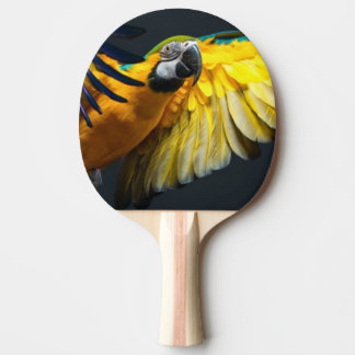 Colourful flying Ara on a dark background Ping Pong Paddle