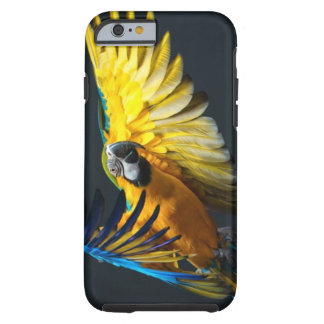 Colourful flying Ara on a dark background Tough iPhone 6 Case