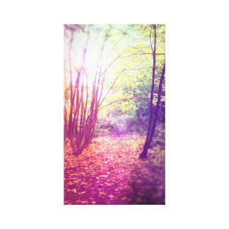 Colourful Forest Canvas Print