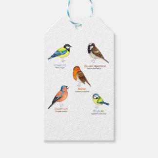Colourful garden birds gift tags