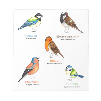Colourful garden birds notepad
