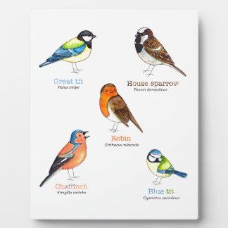 Colourful garden birds plaque