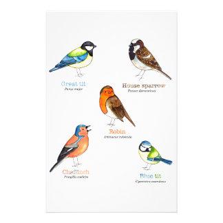 Colourful garden birds stationery
