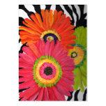 Colourful Gerbera Daisy Business Cards