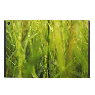 colourful green natural outdoor abstract design iPad air case