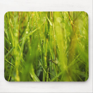 colourful green natural outdoor abstract design mouse mat
