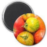Colourful Heirloom Tomatoes