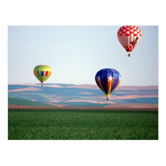 Colourful hot air balloons float over wheat postcard