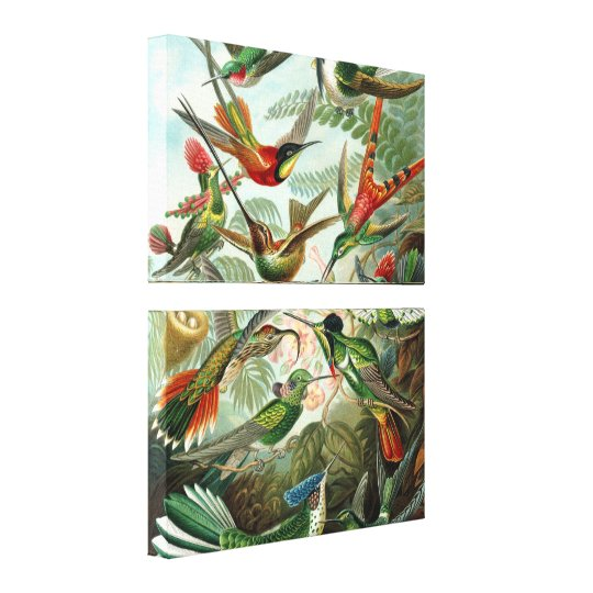 Colourful Hummingbirds Vintage Wrapped Canvas