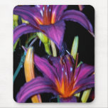 Colourful Lillies Mousemats