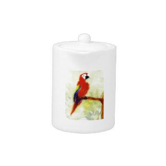 Colourful Macaw Bird Art