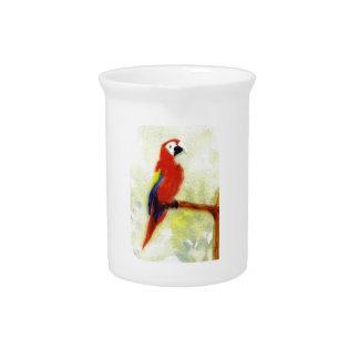 Colourful Macaw Bird Beverage Pitcher