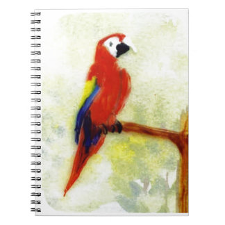 Colourful Macaw Bird Notebook