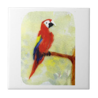 Colourful Macaw Parrot Art Tile