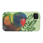 Colourful Macaw Parrot Leaves iPhone 4/4S Cases