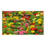 Colourful Marigold Flower Bed Pack Of Standard Business Cards