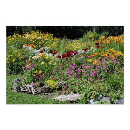 Colourful Mid Summer Gardens! Poster