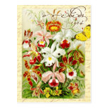 Colourful Orchids and yellow butterfly Post Card