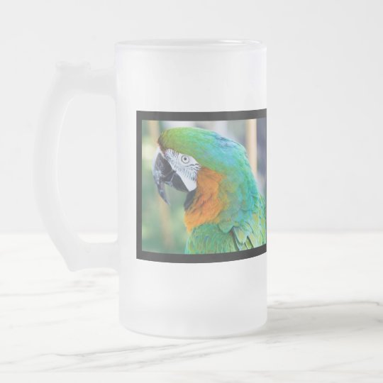 Colourful Parrot Frosted Beer Mug