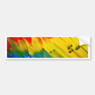 Colourful parrot wing bumper sticker