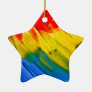 Colourful parrot wing ceramic star decoration
