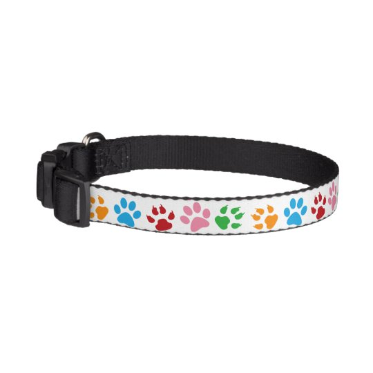 Colourful paw prints cute stylish dog's collar