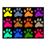 Colourful Paws Post Cards