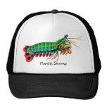 Colourful Peacock Mantis Shrimp Hat