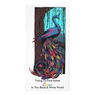colourful peacock picture card