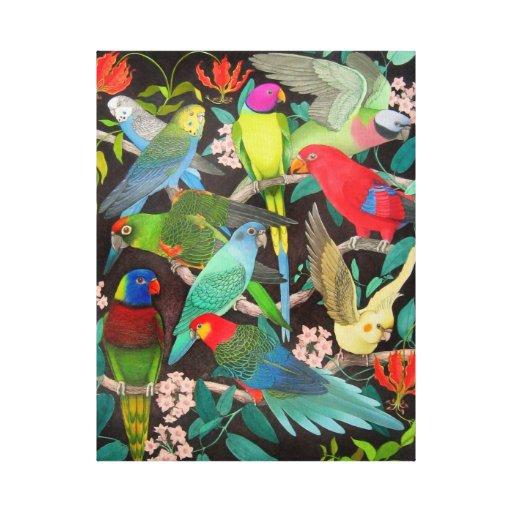 Colourful Pet Parrots Wrapped Canvas